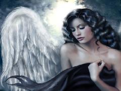 Click to downlowd the picture :: Angel in the night