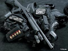 Click to downlowd the picture :: Gun and SWAT stuffs