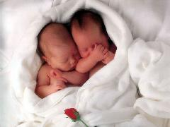 Click to downlowd the picture :: Two babies with a red rose