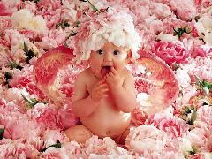 Click to downlowd the picture :: Baby in the flowers