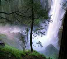 Click to downlowd the picture :: Waterfall in the forest