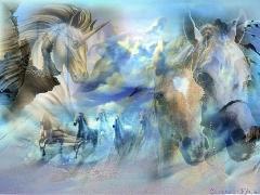 chevaux-1150478257-t.jpg