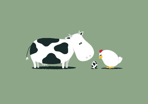 Funny egg from a cow and a chicken
