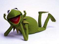 Click to downlowd the picture :: kermit