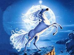 Images de Licornes