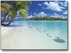 Cliquez pour télécharger l'image :: plage