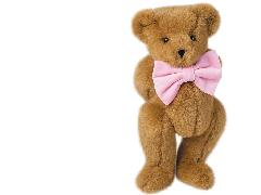 Click to downlowd the picture :: Teddy