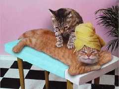 petit_massage-t
