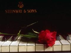Click to downlowd the picture :: Piano & rose