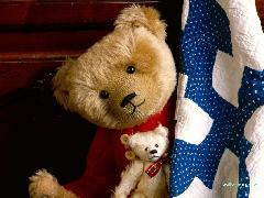 Click to downlowd the picture :: teddybear