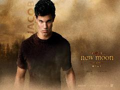 Click to downlowd the picture :: Jacob Black - Twilight