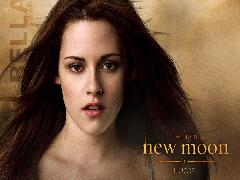Click to downlowd the picture :: Kristen Stewart twilight - New Moon
